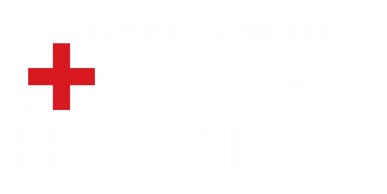 Elmwood-Grove Animal Hospital